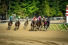 Saratoga Horse Race at the Last Turn