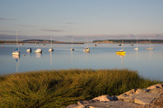 Sailboats-in-the-Wellfleet-harbor