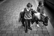 Irish-boys-with-Mini-Pony