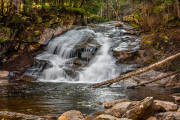Tenant-Falls